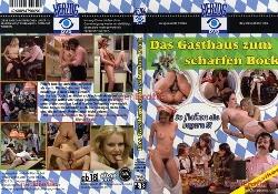 243Das_Gasthaus_zum_schar.jpg